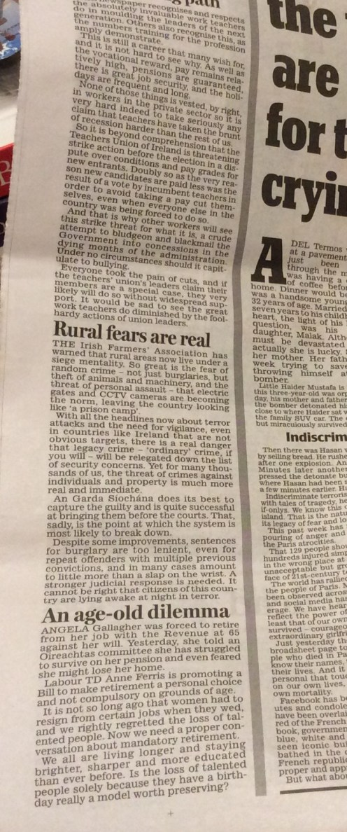 Opinion column Irish Daily Mail November 19 2015