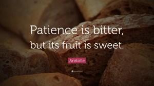 Aristotle Patience Meme