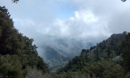 Mount Wilson Peak via Chantry Flat Trail