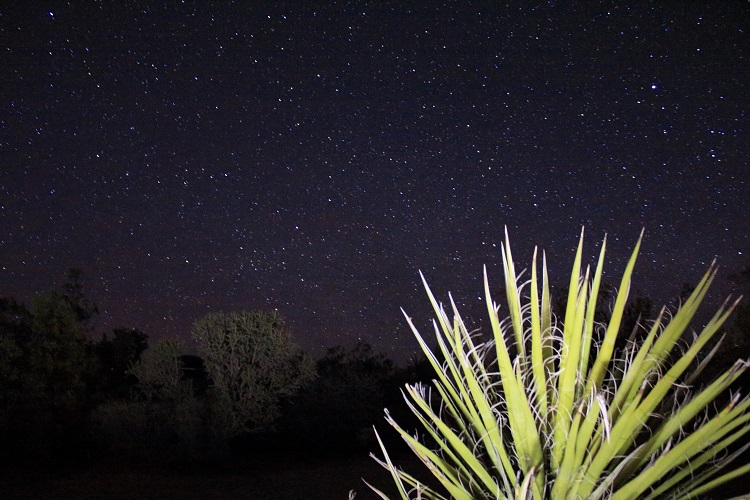 Joshua Tree National Park, Astrophotography, day trip, day guide, points of interest, hiking