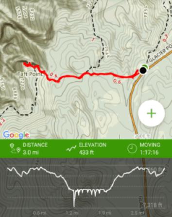 Taft Point hike