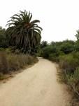 Batiquitos Lagoon Trail, San Digo Hikes, Carlsbad, Encinitas