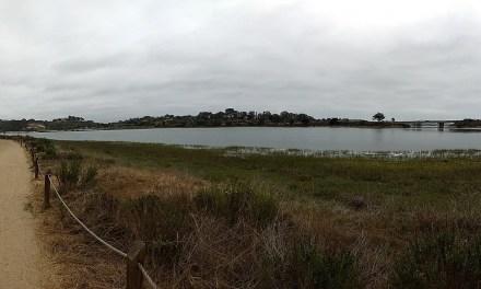 Batiquitos Lagoon Trail