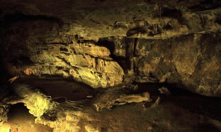 Crystal Cave Trail Guide