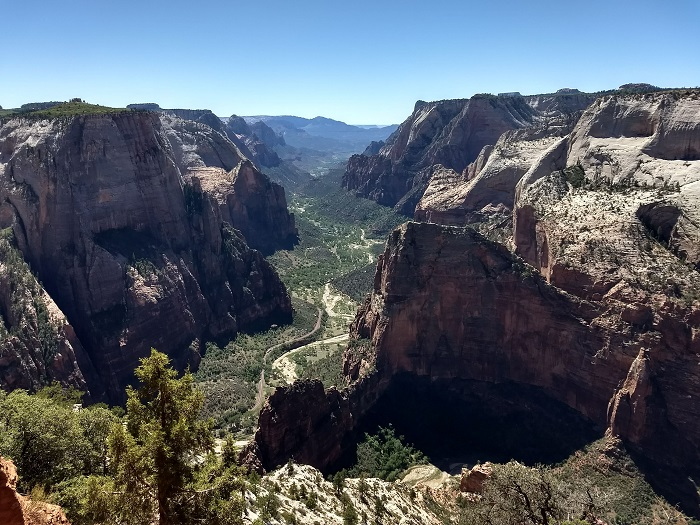 Observation Point Trail Guide In Zion National Park