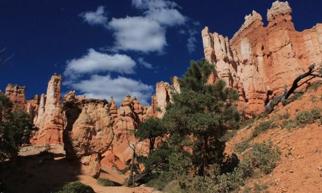 Navajo Loop and Queen's Garden Trail