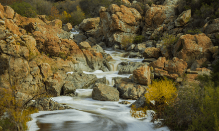 Hiking Los Penasquitos Canyon Preserve Trail Guide