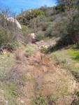 El Cajon Mountain, El Capitan Preserve, Hiking Guide, Trail, San Diego