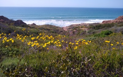 Five Top Summer San Diego Hikes