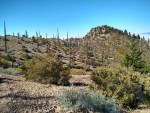 Cucamonga Peak, Bighorn Peak, Ontario Peak, Hiking Trail Guide
