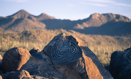 Signal Hill – Saguaro National Park