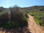 Black Mountain trail hiking guide, San Diego