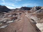 Blue Mesa Hiking Trail , Petrified Forest National Park, Arizona, Painted Desert