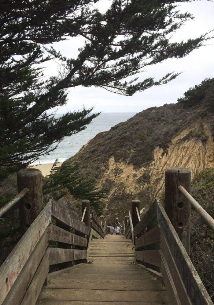 Gray Whale State Park2 - The Simple Proof