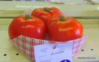 That is a prize winning tomato