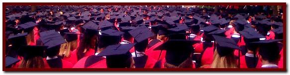 Harvard Graduation Caps