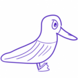 Profile picture of Birdie