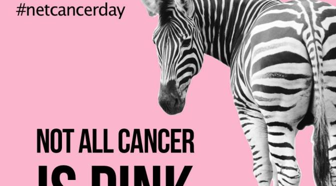 Today Is NET Cancer Awareness Day: Bring Out Your Inner Zebra!