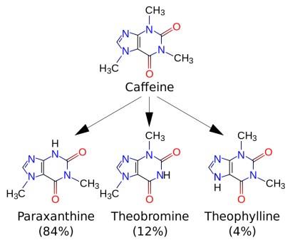 Caffeine_metabolites