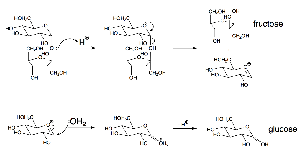 reaction scheme hydrochloric acid sucrose fructose dextrose