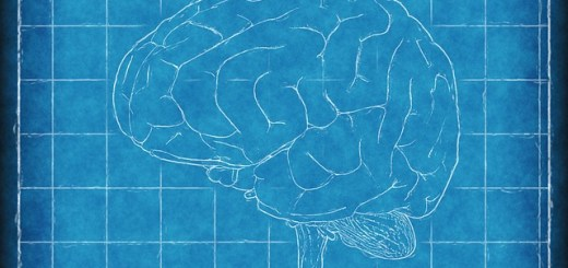 brain blueprint outline drawing