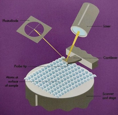 atomic force microscopy diagram cantilever beam tip