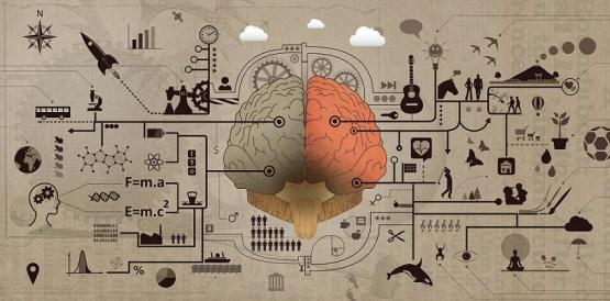 left brain right brain logic creativity artwork