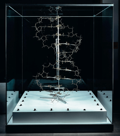 ball stick model DNA watson crick double helix