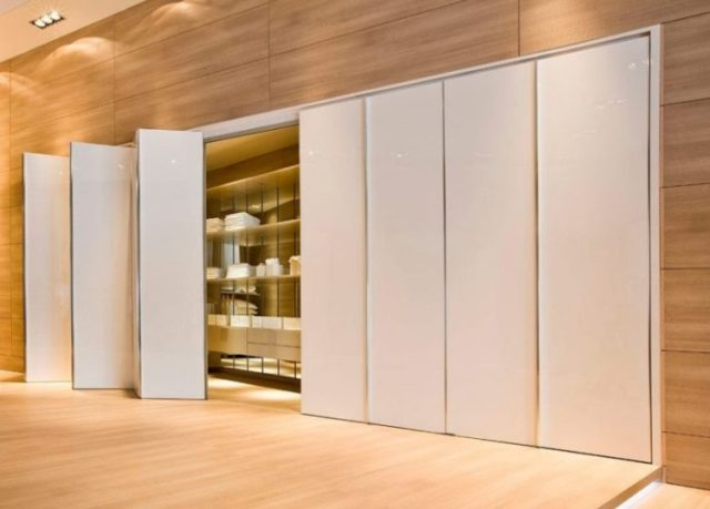 Fascinating Closet Door Ideas Suggestions For Modern Home ...