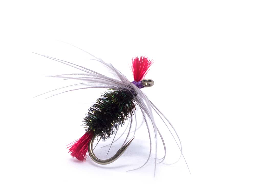 Bradshaw's Fancy grayling fly