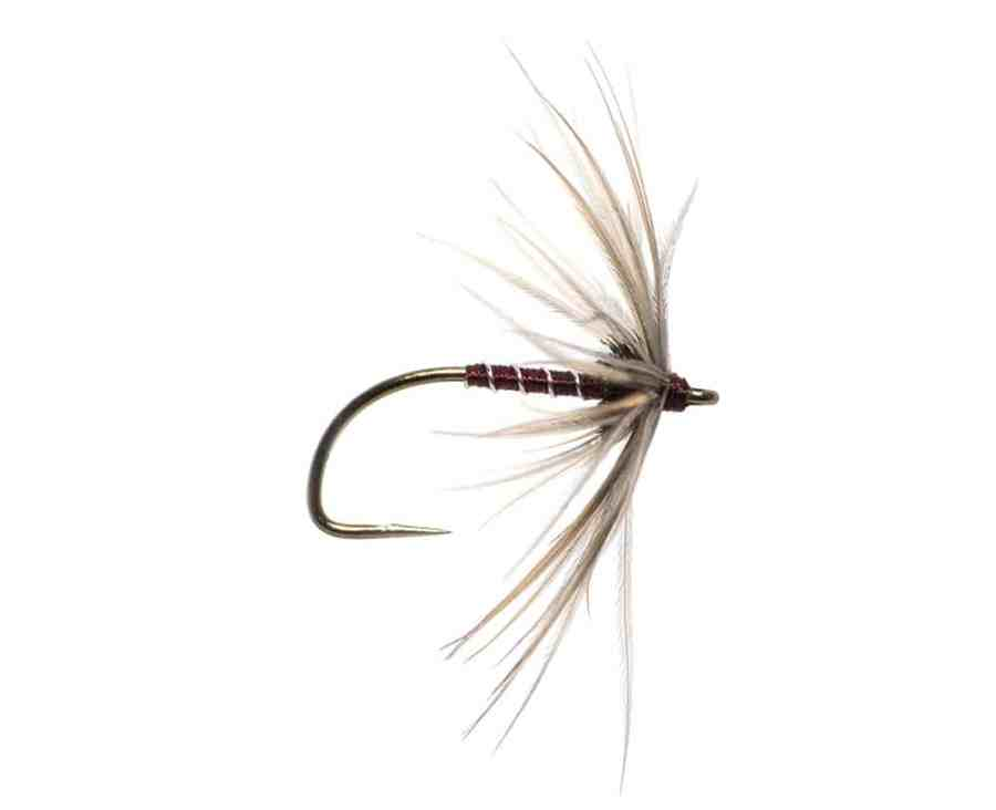 North Country Spider the Cowside Spider tied by Robert Smith