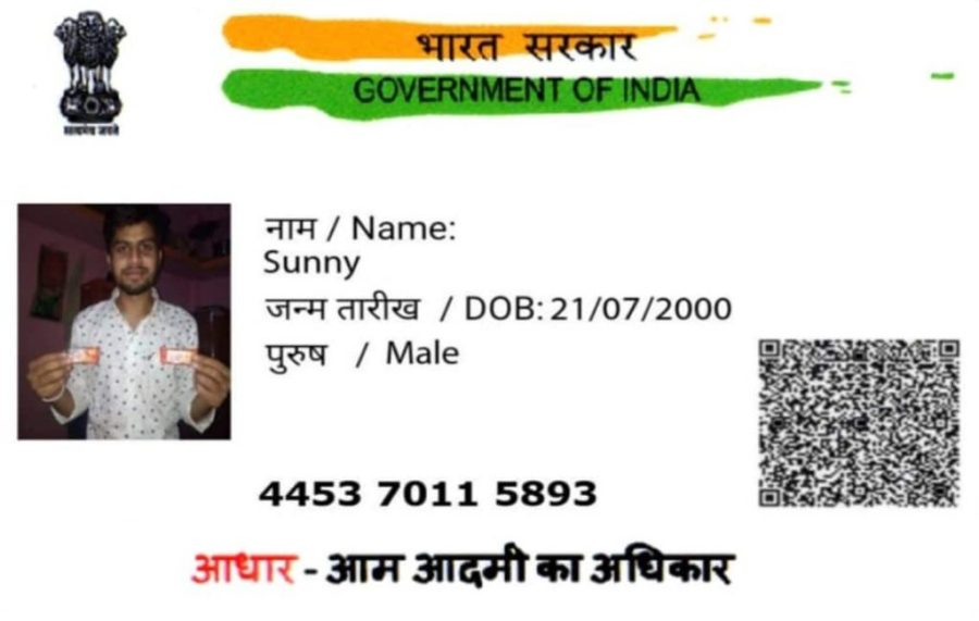 Fake Aadhar Card Pics