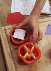 geometry in food