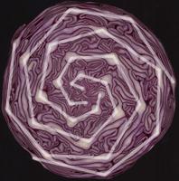 showing spirals