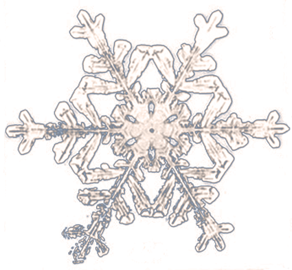 wilson Bentley snowflake