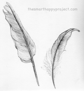 feather illustration black and white