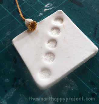 poppy seed head imprints in clay