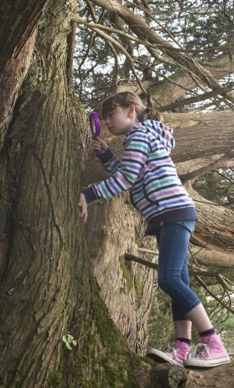 using nature observation tools