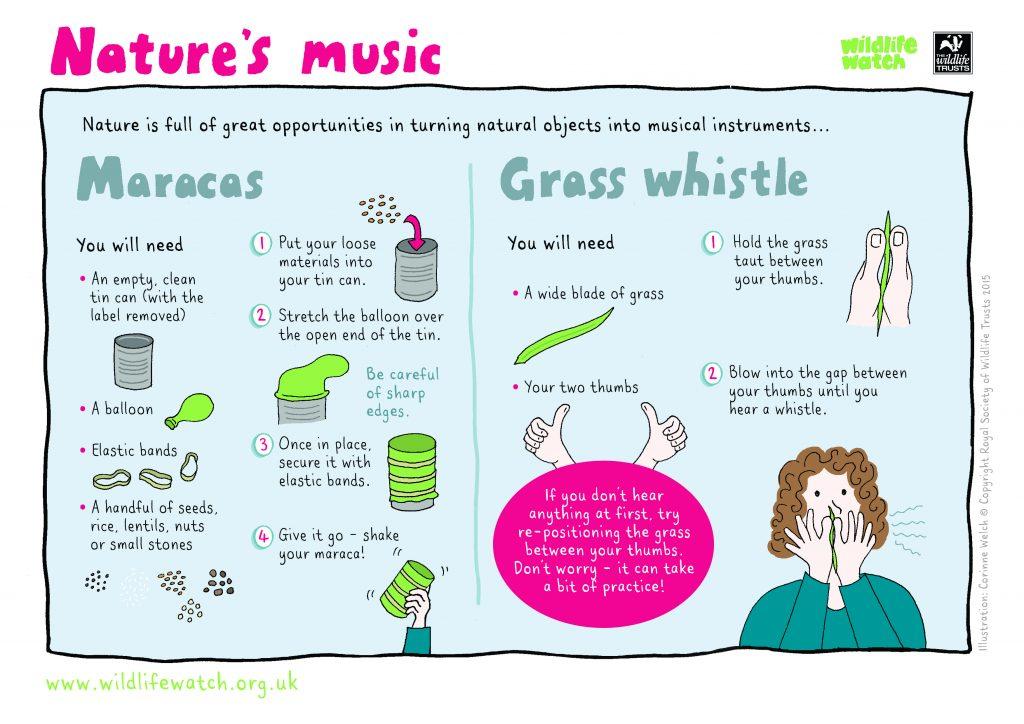 naturemusic activity