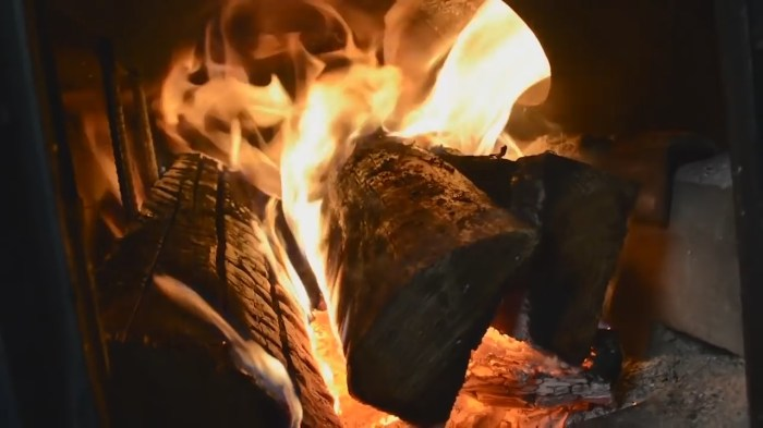 Best Wood To Burn In Wood Stove
