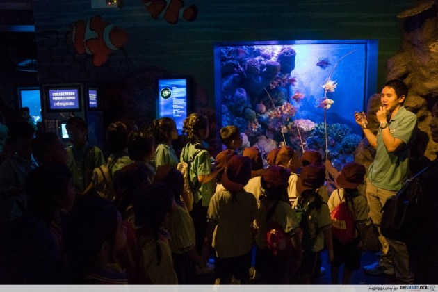 SEA LIFE Bangkok Ocean World's Ranger Pack