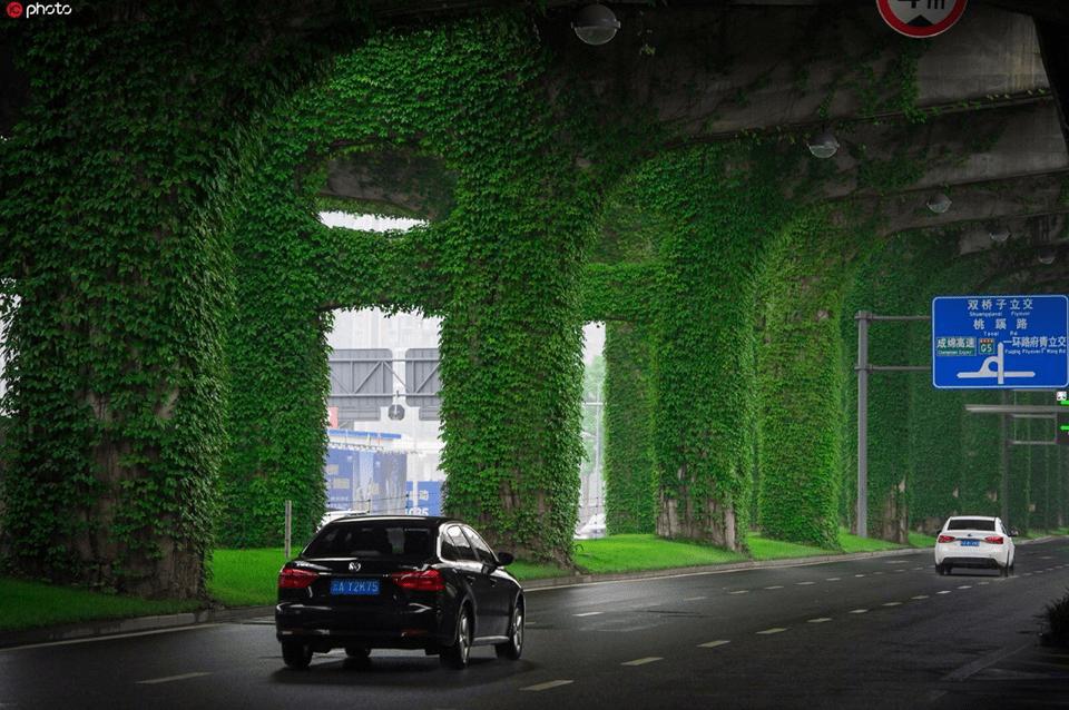 Green Corridor in Chengdu, China