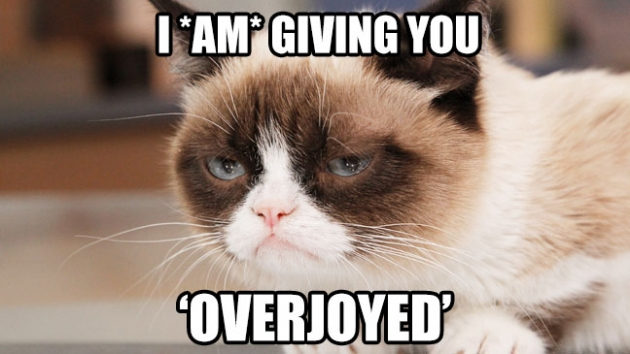 b2ap3_thumbnail_Grumpy_Cat_Overjoyed_a_l.jpg
