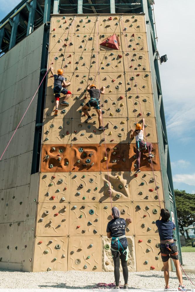 sport climbing wall