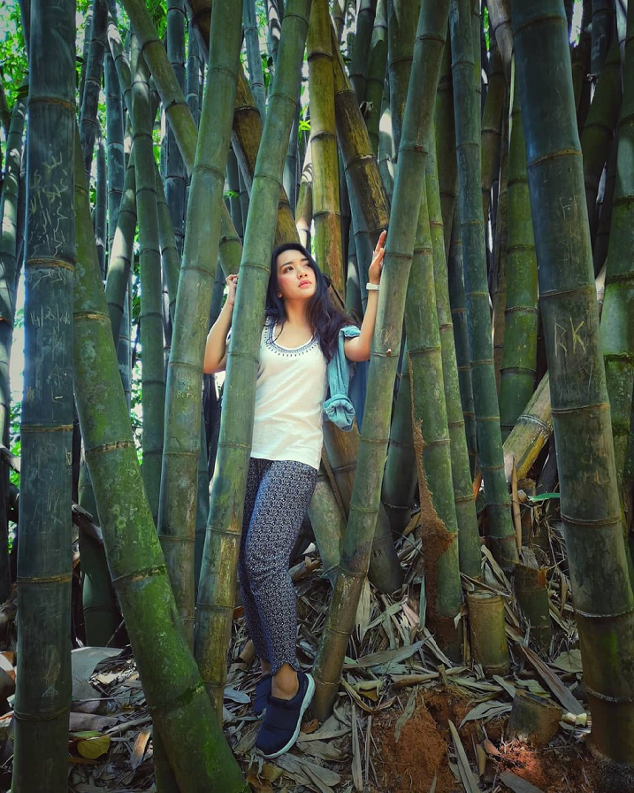 kl forest eco park instagrammable kuala lumpur kl