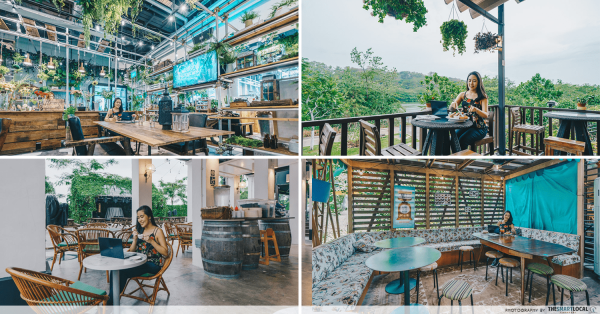 8 Work-Friendly Cafes In Singapore Surrounded By Nature To Boost Your Productivity Levels