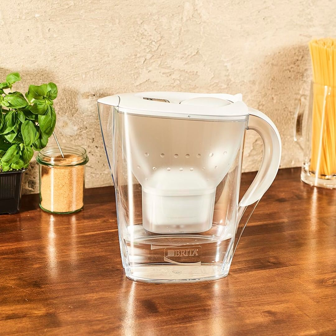Household items lifespans: water filter