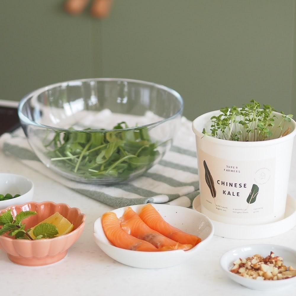 grow & cook kit