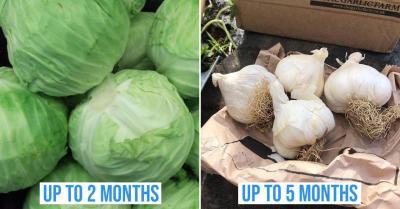 longest lasting veggies