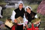 Asturianitas